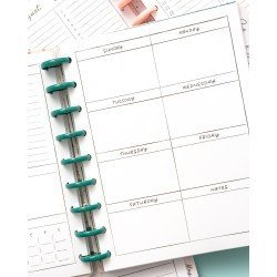 Classic Disc Planner - Blue and Pink Rose - Dashboard layout - Maggie Holmes