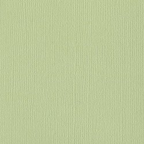 Papier vert clair « Aloe vera » - Mono - Bazzill Basics Paper