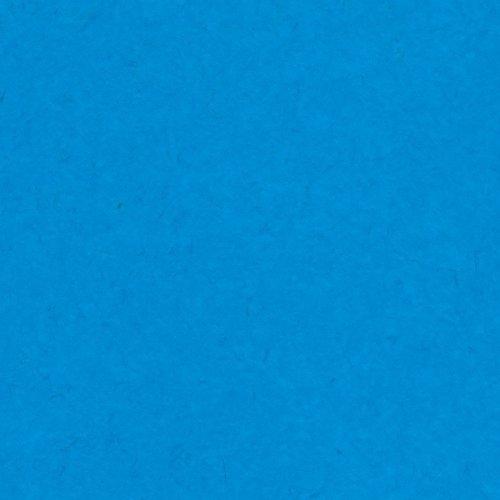 Papier bleu - Blue raspberry - Framboise bleue - Smoothies - Bazzill Basics Paper