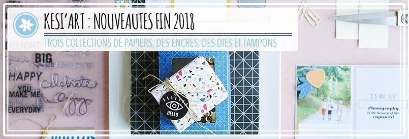 Collections de papiers scrap, encres, dies et tampons