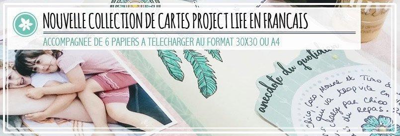 Collection de Cartes Project Life Pucine & Poti