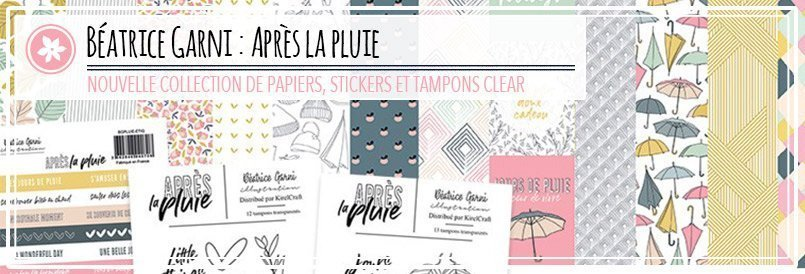 Collection de papiers de scrapbooking